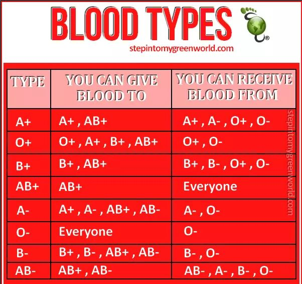 Do You Know Your Blood Type? | The Super Organizer Universe